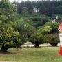Στο Πάρκο Μανιταριών θα διεξαχθεί η Μανιταρογιορτή Γρεβενών