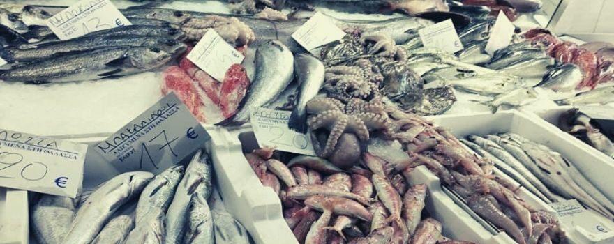 τιμές νωπών ψαριών