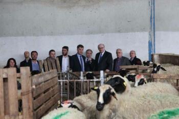 Επίσκεψη Ευρωπαίου Επιτρόπου για θέματα Γεωργίας και Αγροτικής Ανάπτυξης 1